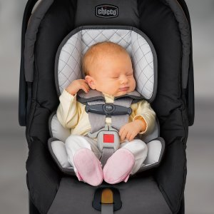 Chicco Infant Insert